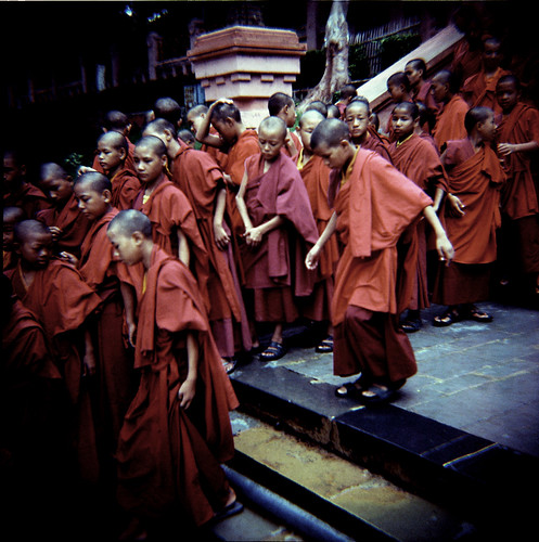 Young Buddhists