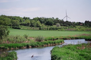 Turbine, river and wildlife