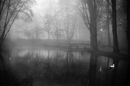 Abbracciati dalla nebbia... by Claudio61 una foto ferma un ricordo nel tempo