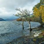 Scotland-2010-S