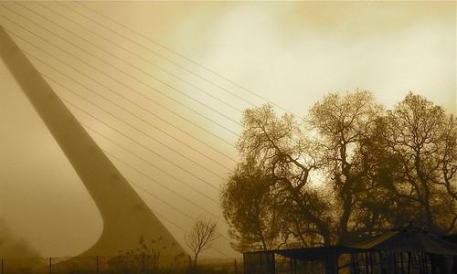 fog norcal reddingca sundialbridge aawadventure