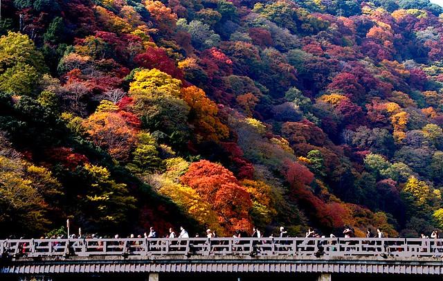 Togetsu-kyo:嵐山・渡月橋