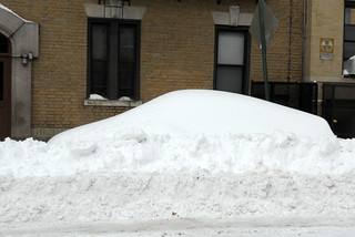 schrodinger's car