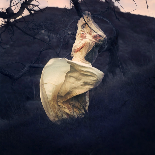 brookeshaden - the hunted