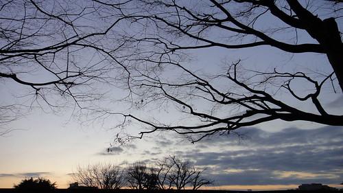 sky cloud shot daily eyefi dsctx5