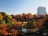 Rikugien Gardens, Japan