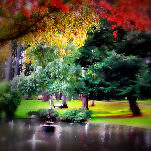 park autumn lake fall pond beaconhill zedzap magicunicornverybest