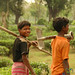 Kids Helping Out at the Tea Plantation - West Bengal, India