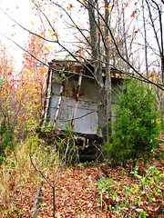 Abandoned Seaboard Hopper Cover Photo