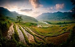 """After the Harvest"" Vietnam~Aisa~Rice~Nikon~D700"