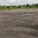 La Brea Pitch Lake in Trinidad and Tobago