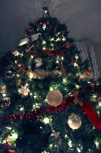 winter christmastree canonef1635mmf28liiusm