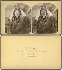 Big Tree, Kiowa Chief
