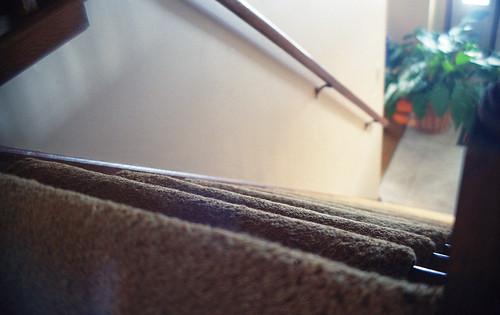 slr film stairs analog vintage photography fuji kodak iso400 grain steps staircase daytime lookingdown railing notdigital fujica az1 lowdepthoffield lowdof childseyeview kodakultramax400 carpetedstairs ilovefilmphotographykodakultramax400