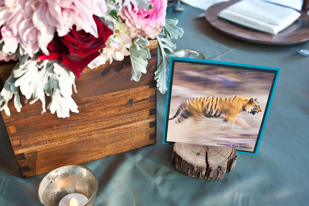 Escort card with tiger photo displayed on dinner tables at wedding