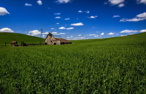 Old Barn in a Palouse Wheat Field HDR