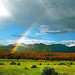 Rainbow over the Rocky Mountains - Colorado by isaac.borrego