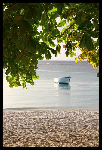 ocean sunset sea tree beach leaves relax island boat leaf maurice indianocean ile calm shore tropical mauritius trouauxbiches 550d