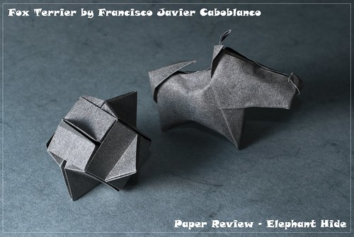 Fox terrier by Francisco Javier Caboblanco & a Cube by Dave Mitchell