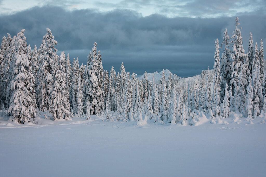 Frosty skies