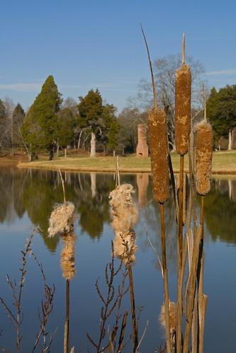trees chimney reflections nc pond northcarolina cattail lincolncounty clinefarm davidhopkinsphotography ncpedia