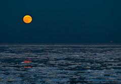 Sylt #15 - Moonrise