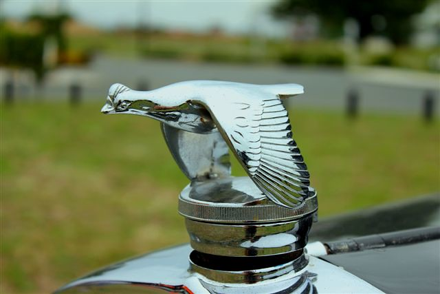 1929 Ford Model A Special Coupe hood ornament
