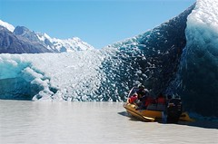 Glaciers explorers with the blue iceberg in the Tasman Glacier Terminal Lake