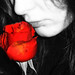 rose by *°ameLIE*°