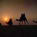 Caravan of People and Camels in the Thar Desert
