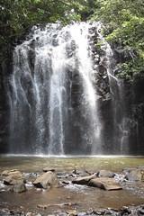 Ellinjaa Falls (Millaa Millaa)