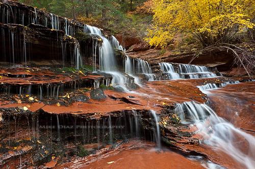 red bw canon subway utah nationalpark sandstone fallcolor hiking ngc hike cascades zion np polarizer 1740mm manfrotto northcreek leftfork 5dmkii