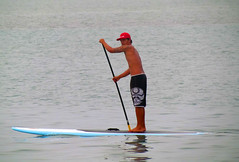 vehicle, sports, watercraft rowing, wind, water sport, stand up paddle surfing, paddle,