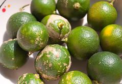plant(0.0), citrus(1.0), key lime(1.0), persian lime(1.0), yuzu(1.0), produce(1.0), fruit(1.0), food(1.0), tangelo(1.0), sweet lemon(1.0), bitter orange(1.0), lime(1.0),