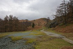 Lochrigg Terrace