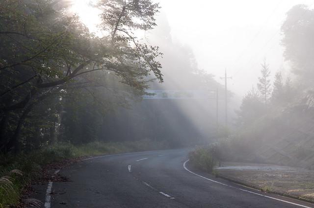 立雲峡の霧