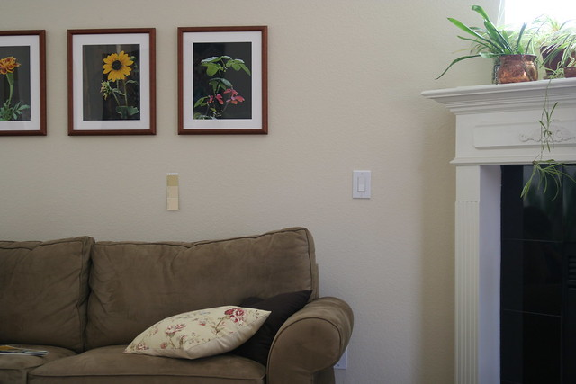 The Living Room With Paint Sample Card Flickr Photo
