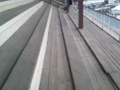 outdoor structure(0.0), boardwalk(0.0), walkway(0.0), bridge(0.0), deck(1.0),