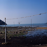 Sham Wat Beach Antennas