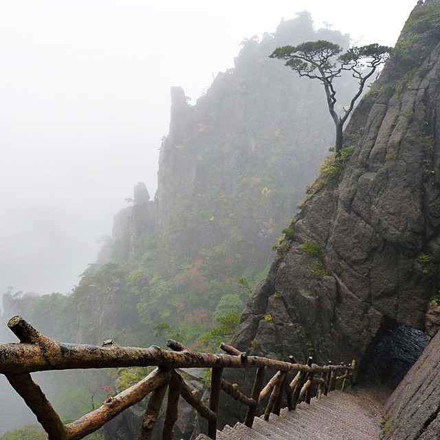 Huangshan (Yellow Mountain) - precipitous stairs and cliff ...