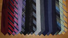 wing(0.0), art(1.0), pattern(1.0), textile(1.0), clothing(1.0), purple(1.0), necktie(1.0), blue(1.0),