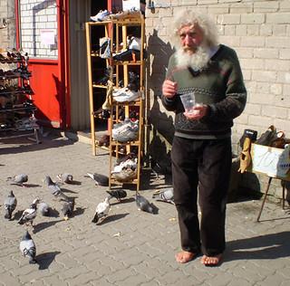 2009 Pigeon feeder in Tallinn