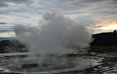 sea(0.0), body of water(0.0), geyser(0.0), wind wave(0.0), wave(0.0), blowhole(1.0), spring(1.0),