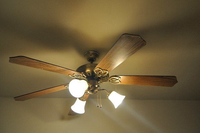 Foyer Ceiling Fan Light : Photo