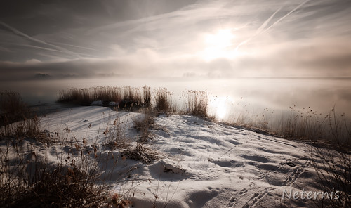 morning winter light sunset sky sun sunlight white mist lake snow cold reflection reed water fog clouds sunrise bavaria dawn evening early haze track bright dusk trace vegetation late chiemsee