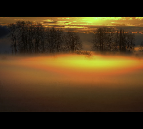 light sunlight canada silhouette fog vancouver sunrise nikon bc britishcolumbia meadow nikond70s 风景 hdr 加拿大 景色 barnstonisland カナダ 조경 캐나다 nikkor55200mmvr