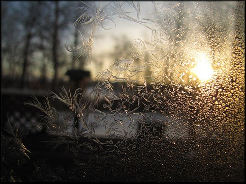 sunrise through window frost