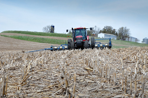 conservation tillage practices like no till allow farmers to plant cash crop seeds with little