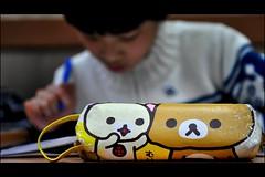 Pencil Case Series - Yago