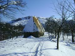 iarna la preluca/winter at preluca